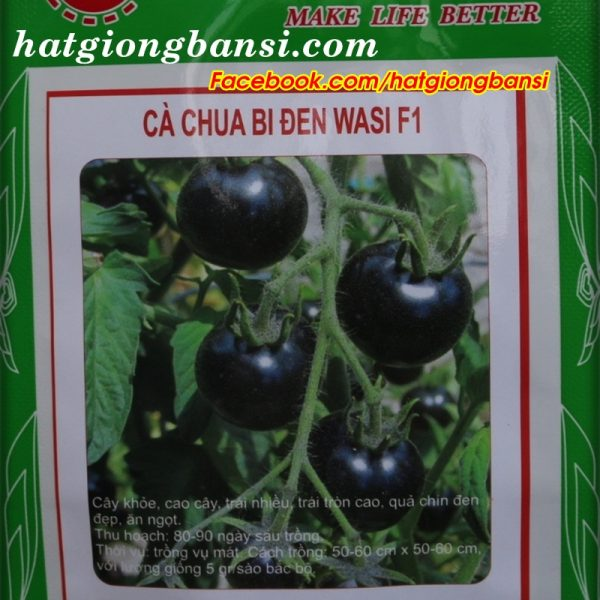 Hạt giống cà chua bi đen