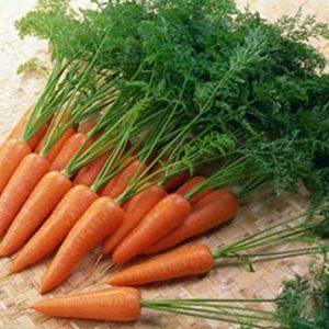 Cà rốt mini